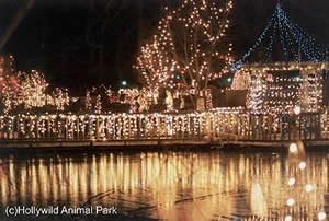 greenville, Celebrate the Holidays at Hollywild with the Annual ...