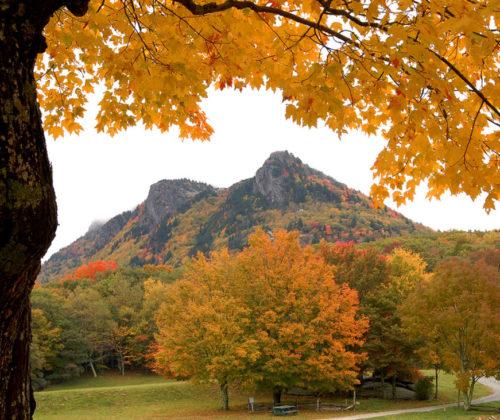 Autumn Falls Into Color At Grandfather Mountain