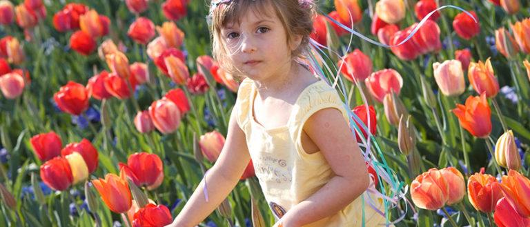 Girl wandering through tulips at Biltmore Blooms.